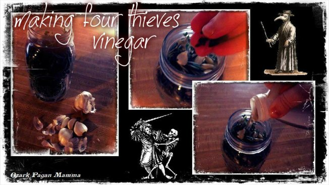 making four thieves vinegar - Ozark Pagan Mamma