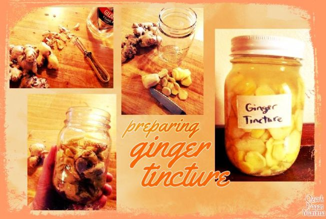 preparing ginger tincture